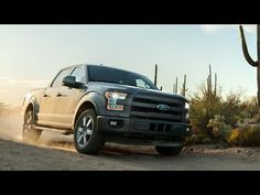 """The Don Tester Times 