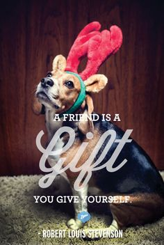 A Friends is a Gift you Give Yourself