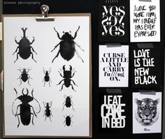 Beetle poster (from RK Design) + print cards