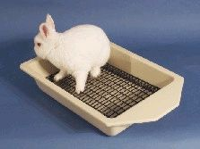 Teach your pet house rabbit to use a litter pan. & Hereu0027s a homemade grate for a litter box - I plan to do something ... Aboutintivar.Com