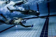 Hockey Subacutico-Underwater Hockey Ho Ho Tournament Orcas, Hockey, Sport, Underwater, Sci Fi, Swimming Pools, Sports, Deporte, Field Hockey