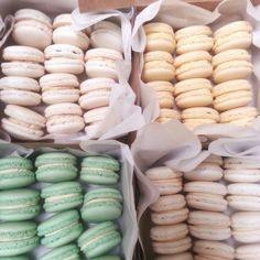 Filipino inspired macarons:  sans rival,  mango,  buko pandan,  and pastillas de leche