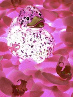 Shimmerig PINK Conrad Lucky Ducky