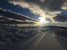 <p>VENABYGDSFJELLET: Lav sol over fine løyper tirsdag. Foto: Privat</p>