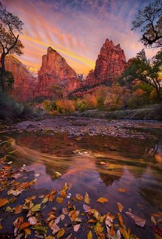 Court of the Patriarchs, Zion - A rich blend of Autumn colors and sunrise glow in Zion National Park, Utah.