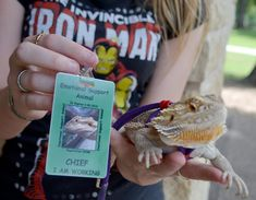 Teenager's bearded dragon helps ease her anxiety - WacoTrib.com: Waco Today