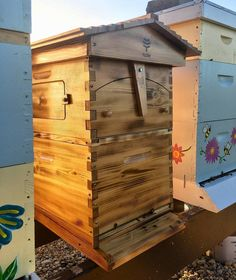 🐝📷 from @sweet_madison_honey  •  •  •  •  🐝#bees 🐝#beeswax #beesknees #beesofinstagram #beesting #beestrong #beeston #beesmochi #beesquad #beestenboel #beesinthetrap #beeshrimp #beeshyoos #beesweet #beeswarm #beeswaxcandle #beestenboel #beeswaxwraps #beestagram #beeswaxblack #beeshuffle #beestinger #beesket #beeson #beestings #honey #honeybees #droplets #dewdrops #morningdew