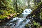 Submitted by /u/jwolfbluemoon on Reddit. Lost Creek Oregon [OC] [2450x1633]