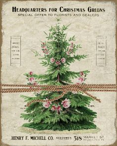 Vintage Christmas Botanical -  Christmas Graphics - Large Image - Instant Download - Digital Collage Sheet Printable by FrenchPaperMoon on Etsy