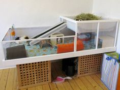 awesome guinea pig home