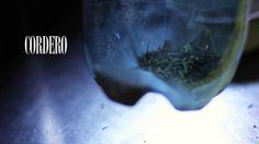 Trilogia del Sur son tres historias que retratan las vacaciones familiares en Bariloche   Peninsula San Pedro, Bariloche, Argentina Enero 2014 FIlmed and edited by HdA FILMS www.huellasdelalma.com
