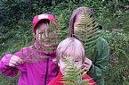 der Wald wird erforscht Kids, Exploring, Woodland Forest, Children, Baby Boys, Child, Babys, Babies