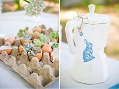 succulents in eggs!  featured in Seven Swans Wedding Stationery Blog
