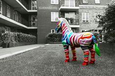 Colorful Zebra. #zebra #sfvm #photography #colorful #art #sfvmphotography
