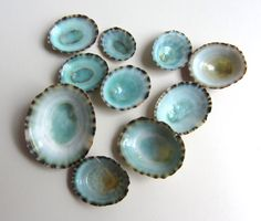 Turquoise Shells 15 pcs  Beach Decor  Small Limpet by CereusArt, $3.75