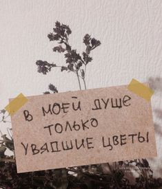 Russian Quotes, She Loves You, Aesthetic Words, Sad Pictures, Dear Lord, Angst, Life Memes, Some Words, In My Feelings
