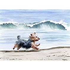 """Yorkshire Terrier at the Beach"" Dog Art Print Signed by Artist DJ Rogers Yorshire Terrier, Silky Terrier, Pitbull Terrier, Yorkies, Perros Yorkshire Terrier, American Pit Bull Terrier, Positive Dog Training, Training Your Dog, Rottweiler Puppies"