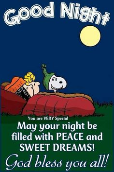 Pin by dene king on snoopy Good Night Prayer, Good Night Blessings, Good Night Messages, Good Night Quotes, Snoopy Love, Snoopy And Woodstock, Minion Smile, Goodnight Snoopy, Evening Quotes
