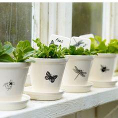 Modern Botanical Plant Pots and Dishes. Outdoor Craft Paint fra Panduro på rødlerspotter og så clearstamps. Må prøves!!