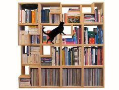 Cat-Friendly Modular Bookshelf by Corentin Dombrecht. Not that cats actually need cat-friendly bookshelves to encourage them to walk all over it, but it's a nice idea! Plywood Bookcase, Modular Bookshelves, Creative Bookshelves, Bookshelf Design, Modular Shelving, Modern Bookcase, Bookcases, Stair Bookshelf, Tree Bookcase