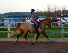 Training with Sonia Baines