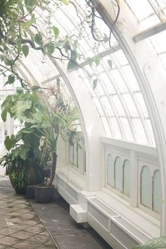 1000 Images About Home Atrium Greenhouse On Pinterest