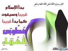 talibatalgannat.com vb forumdisplay.php?f=246