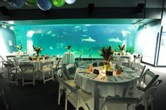 The North Carolina Aquarium wedding venue on the Outer Banks, catering by Red Sky Cafe in Duck