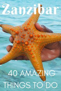 40 Amazing Ideas for Things to Do in Zanzibar