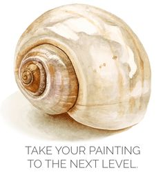How to paint a realistic shell in watercolor by Anna Mason Watercolor Sea, Watercolour Painting, Painting & Drawing, Watercolours, Watercolor Classes, Shell Drawing, Simple Watercolor, Watercolor Video, Seashell Painting