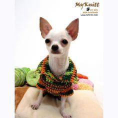 Bohemian orange green cute chihuahua fashion clothing handmade crocheted by Myknitt. Complete collection at www.myknitt.com #myknitt #handmade #diy #crochet #dog #pets #fashion #clothing #clothes