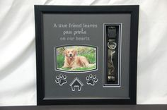 11 x 12 Dog Memorial with collar Pet Memorial Frames, Dog Memorial, Pet Memorials, Losing A Pet, True Friends, Leaf Prints, Shadow Box, Fur Babies, Your Pet
