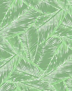 Best Fronds Wallpaper - Green