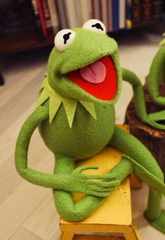 Kermit The Frog Puppet, Die Muppets, Princesa Disney Bella, Frog Template, Sapo Meme, Best Christmas Toys, Frog Wallpaper, Frog Costume, Custom Puppets