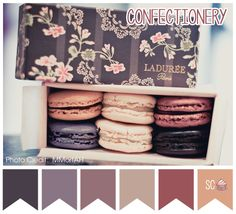 Macaroons ♥ This would always remind me of Blair Waldorf (Leighton Meester) in Gossip Girl! Especially when she's stressed out and all she could do is look for a comfort food and munch on these macaroons! Laduree Macaroons, French Macaroons, Color Palate, Color Tones, Chocolate, Color Inspiration, Packaging Design, Pretty Packaging, Tea Party