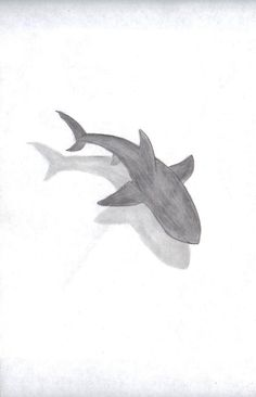 """Pencil Drawing Patterns Shark By """"Kyah Leanne"""" 3d Drawings, Animal Drawings, Drawing Sketches, Pencil Drawings, Drawing Ideas, Space Drawings, Drawing Animals, Drawing Tips, Ocean Drawing"""