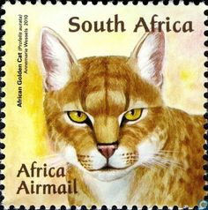 Postage Stamps - South Africa - Wild cats  Order an oil painting of your pet now at www.petsinportrait.com