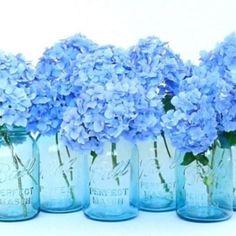 blue water, white flowers in mason jars