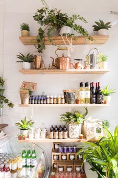 Plant and copper-filled bohemian open shelves. Love!