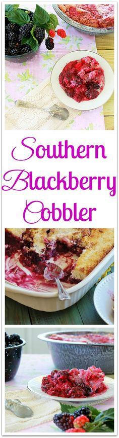 Southern Blackberry Cobbler. An iconic Southern dessert. Blackberries are gently stewed and pour over a three ingredient, biscuit like topping.