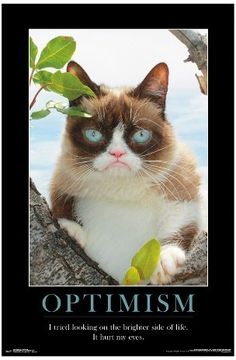 Trends International Grumpy Cat Brighter Side Poster 34x22