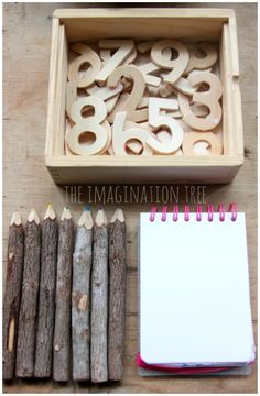 Wooden numerals for counting and ordering  math investigation station