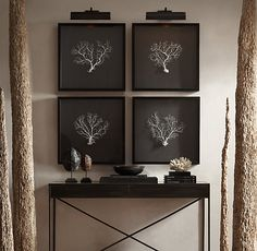 """Preserved Sea Fan with Grey Mat 22""""X22"""""""