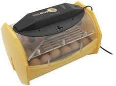 Brinsea Octagon 20 ECO Auto Turn Egg Incubator - Where Can I Get Baby Chicks? How to Plan for Backyard Chickens