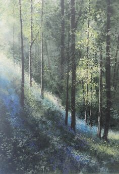 Bluebell-Hill.  Naomi Tydeman