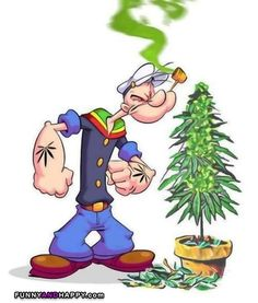 The million dollar question; was It spinach or Cannabis!?