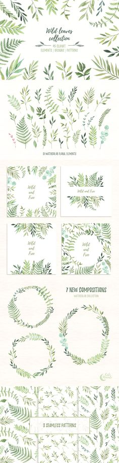 Wild leaves clip art. Watercolor set aquarelle border botanical branch bridal brush decoration design elements drawing eucalyptus floral foliage green leaves greeting card hand drawn herbs illustration invite label laurel wreath leaf logo marriage native natural nature nuptials ornament ornamental pink flower print rustic save the date sketch spring spruce summer vintage watercolor watercolor frame watercolour wedding wedding invitation wild and free wildflower wildlife wreath background…