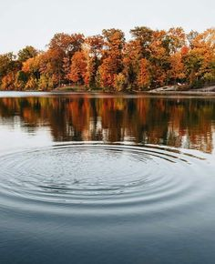 Ripples on the water at Lake Medina. This beautiful autumn Ohio shot was taken by Instagrammer @nickhoeller. Beautiful Sites, Ohio, River, World, Amazing, Instagram Posts, Roots, Outdoor, Autumn