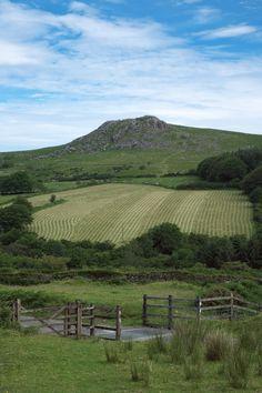 My Dartmoor