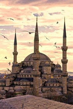 Hagia Sophia ...  we could see this from our hotel's breakfast room in Istanbul.  Gorgeous!